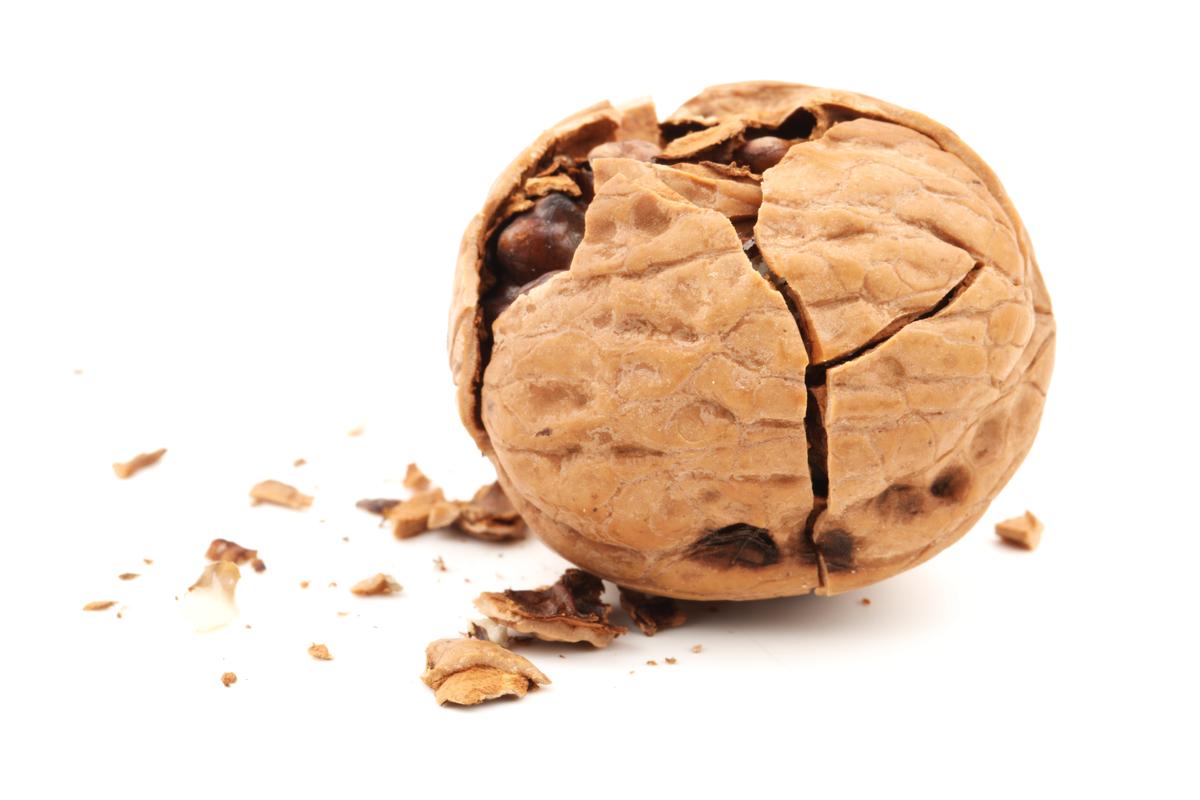 Cracking Nut